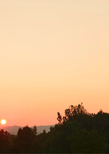 海の夕陽の画像