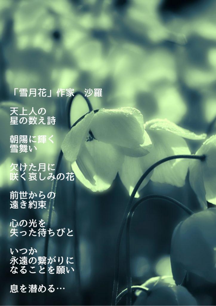 花の画像の写真詩