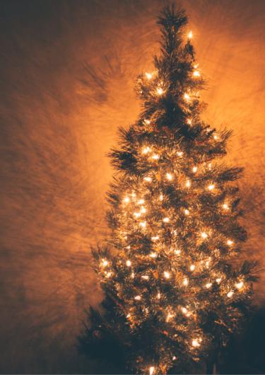 クリスマスツリーの画像