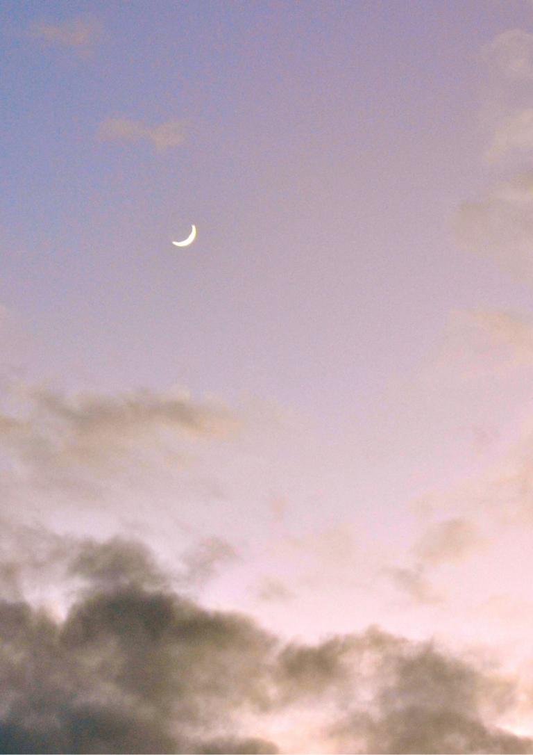 朝の月の画像